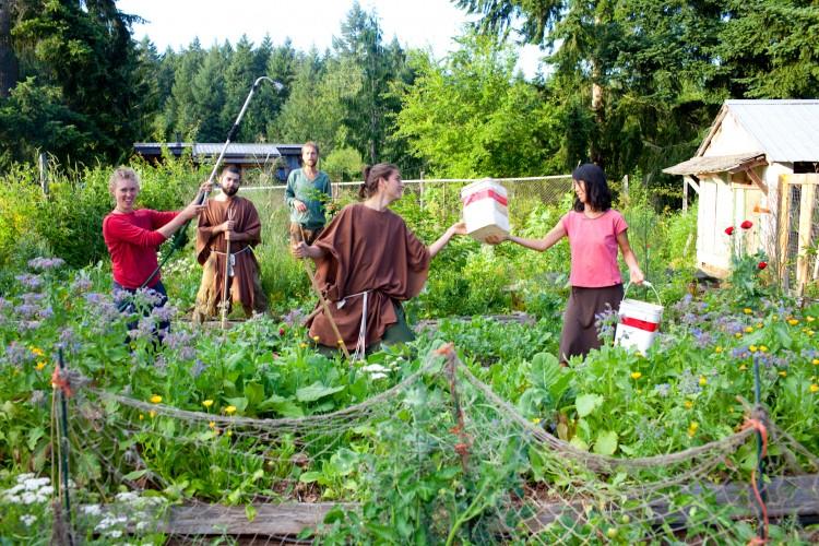 O.U.R. Ecovillage Garden Crew-15